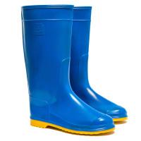 Women's Hight Wellies VIVID, Blue/Yellow